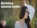 Qaradir Qanim