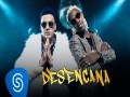 Desencana - Top 100 Songs