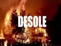 Desole - Top 100 Songs