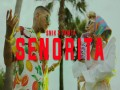 Senorita - Top 100 Songs
