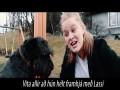 Hundurinn Minn Er Fáviti