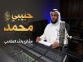 Ll Habiby Muhammad - Top 100 Songs