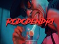 Rododendri - Top 100 Songs