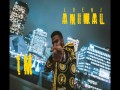 Animal (Clean) - Top 100 Songs