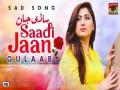 Sadi Jaan