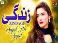 ZINDAGI  - World Song