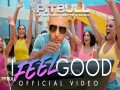 I Feel Good - Top 100 Songs