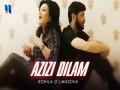 Azizi Delam